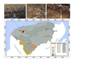 In Karst, inventories of soil organic carbon should be reviewed