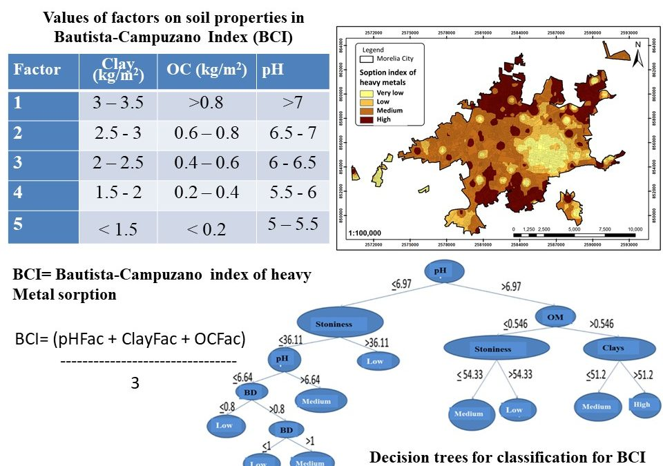 Heavy metal sorption indexes in urban soils: the case of Morelia, Michoacán, México